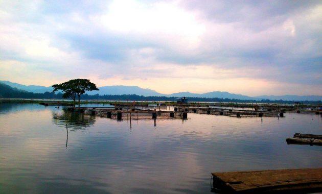 Sejarah Rowo Jombor