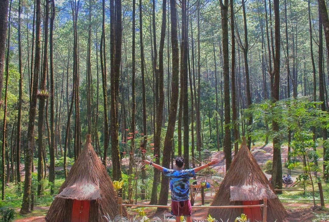 taman hutan raya solo